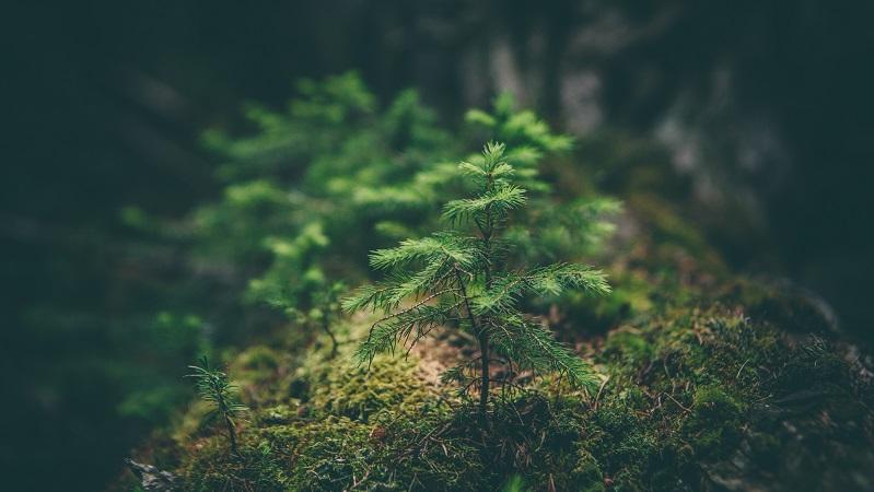 Kvalitet & Miljö